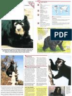 Wildlife Fact File - Mammals - Pgs. 231-240