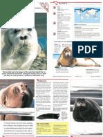 Wildlife Fact File - Mammals - Pgs. 241-250