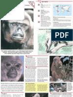 Wildlife Fact File - Mammals - Pgs. 251-260