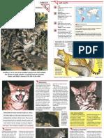 Wildlife Fact File - Mammals - Pgs. 271-280