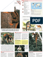 Wildlife Fact File - Mammals  Pgs. 331-340
