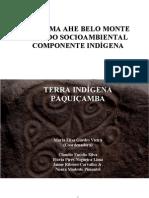 2009 - EIA-RIMA AHE Belo Monte Estudo socioambiental componente indígena
