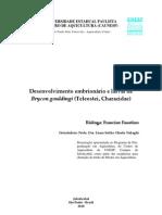 2010 - Desenvolvimento embrionário e larval de Brycon gouldingi