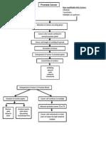 Prostate Cancer Pathophysiology