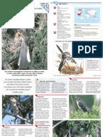 Wildlife Fact File - Birds - Pgs. 101-110