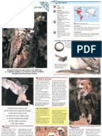Wildlife Fact File - Birds - Pgs. 111-120