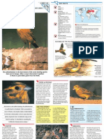 Wildlife Fact File - Birds - Pgs. 141-150