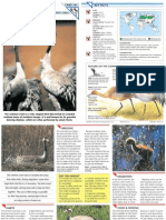 Wildlife Fact File - Birds - Pgs. 161-170