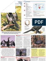 Wildlife Fact File - Birds - Pgs. 181-190
