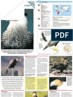 Wildlife Fact File - Birds - Pgs. 191-200