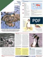 Wildlife Fact File - Birds - Pgs. 221-230