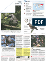 Wildlife Fact File - Birds - Pgs. 241-250