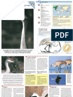 Wildlife Fact File - Birds - Pgs. 261-270
