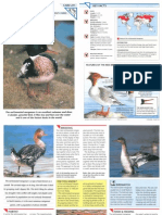 Wildlife Fact File - Birds - Pgs. 271-280