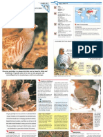 Wildlife Fact File - Birds - Pgs. 291-300