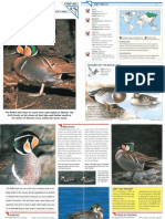Wildlife Fact File - Birds - Pgs. 301-310