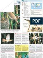 Wildlife Fact File - Birds - Pgs. 311-315