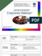 Programa Didáctica MINEC 2007 ultimo.pdf