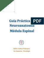 Guia Práctica de Neuroanatomia - Médula