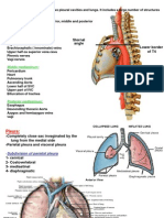 pleura-and-lungs.ppt