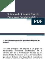 Principio Del Amparo y Diferencia Entre Ambos