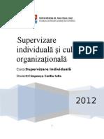 supervizare individuală