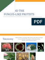 BIO1 - Fungi and Funguslike Protists