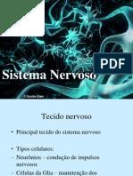 sistnervoso-110819115311-phpapp01-1