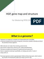 HGPgenemap Structure