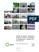 Capítulo 9-Plan Manejo Ambiental, Lote Z-33