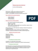 Pharmacologie des anti ulcéreux