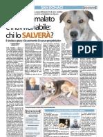 Articolo Senza Colonne 27 gennaio 2013