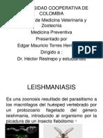 Leishmania Ppt
