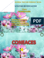 CONEACES2