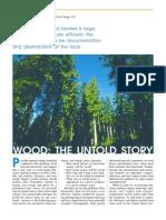 Wood Stove Efficiency
