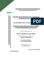 TESIS DOCTORADO GRUAS.pdf