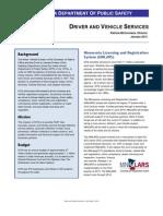 DVS Fact Sheet