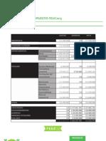 Presupuesto General Directiva FEUC 2013