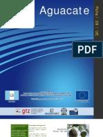 DOCUMENTO AGUACATE.pdf