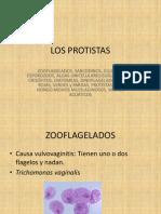 LOS-PROTISTAS.pptx