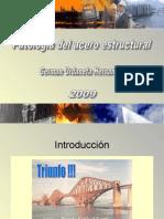 Patologia de las construcciones de acero estructural (notes on steel structures pathology)