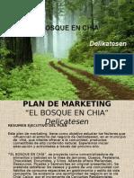 Bosque-plan de Marketing[1]