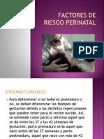 factores de riesgo perinatal