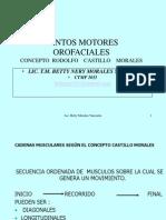 CASTILLO MORALES.pdf