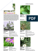21-Types-of-Patra.pdf