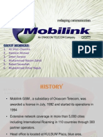 IHRM PROJECT MOBILINK
