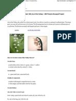 alt model de lacramioara