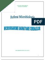 Microbiologia Cerealelor Full