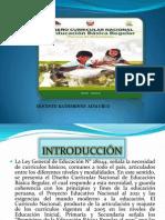Presentacin DCN