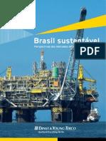 Brasil Sustentável - Perspectivas nos mercados de etanol, óleo e gás